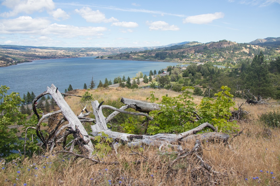 Mosier Twin Tunnels trail in Oregon