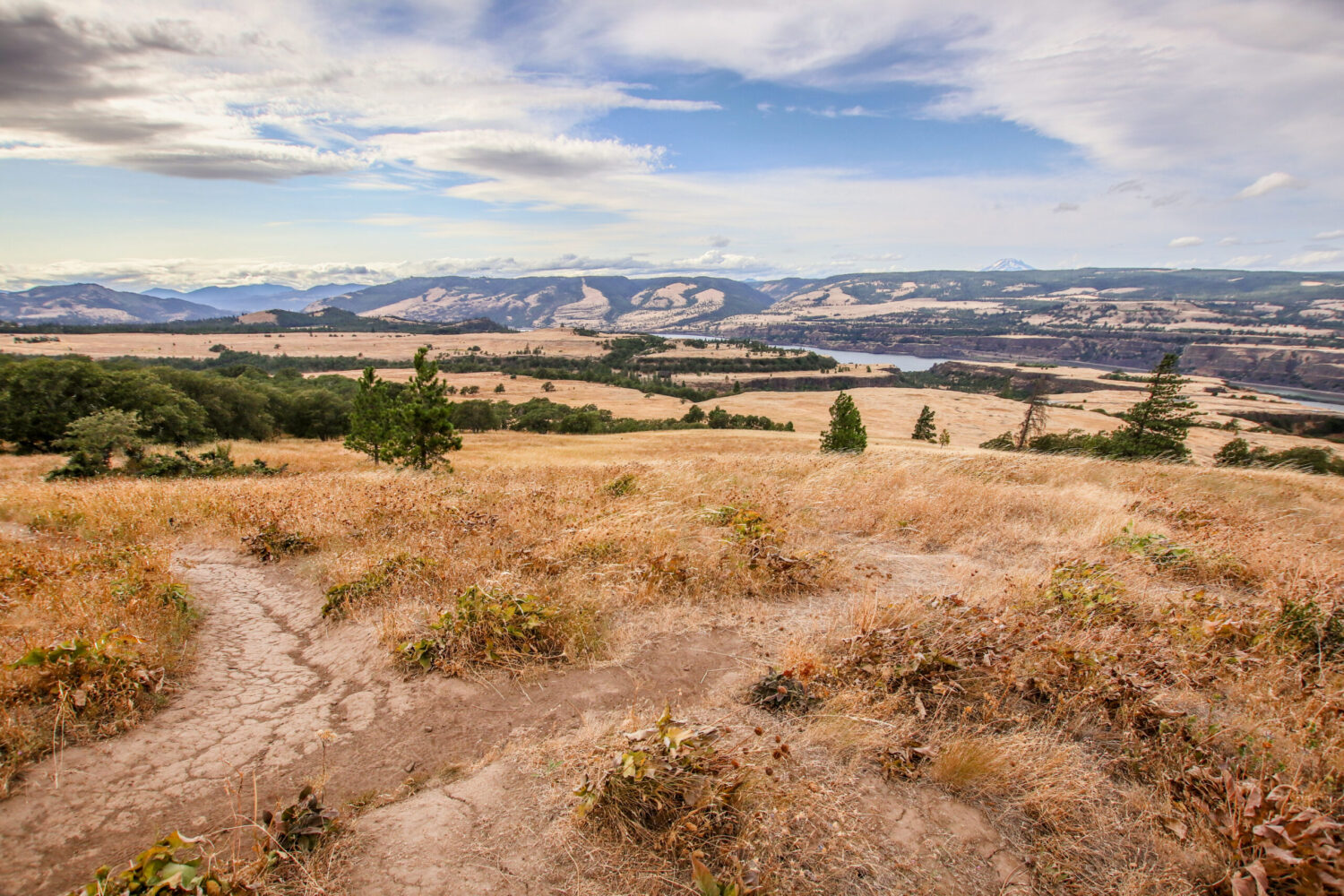 Rowena Crest viewpoint in Oregon