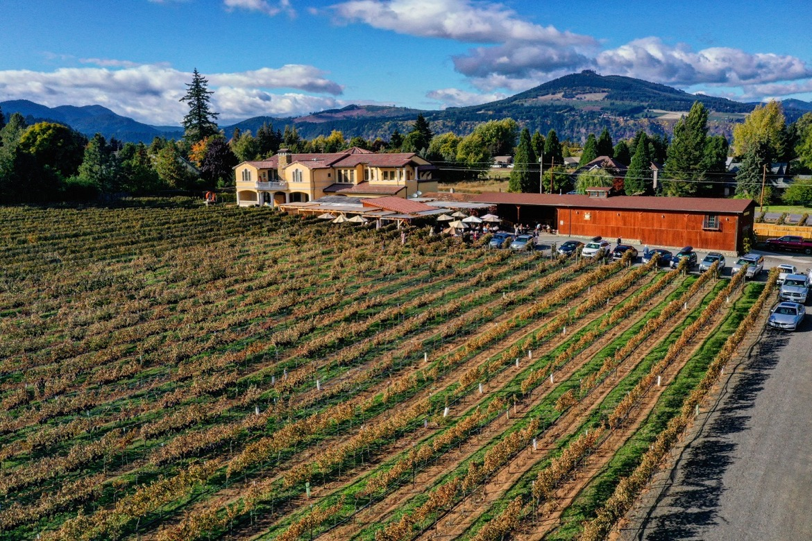 Marchesi Vineyards is one of the best wineries in Hood River Oregon