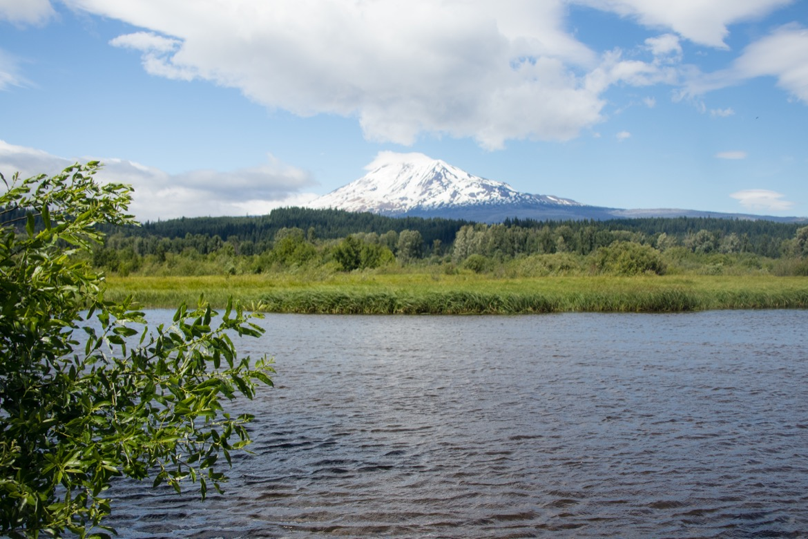 Mount Adams from Lake Road in Trout Lake