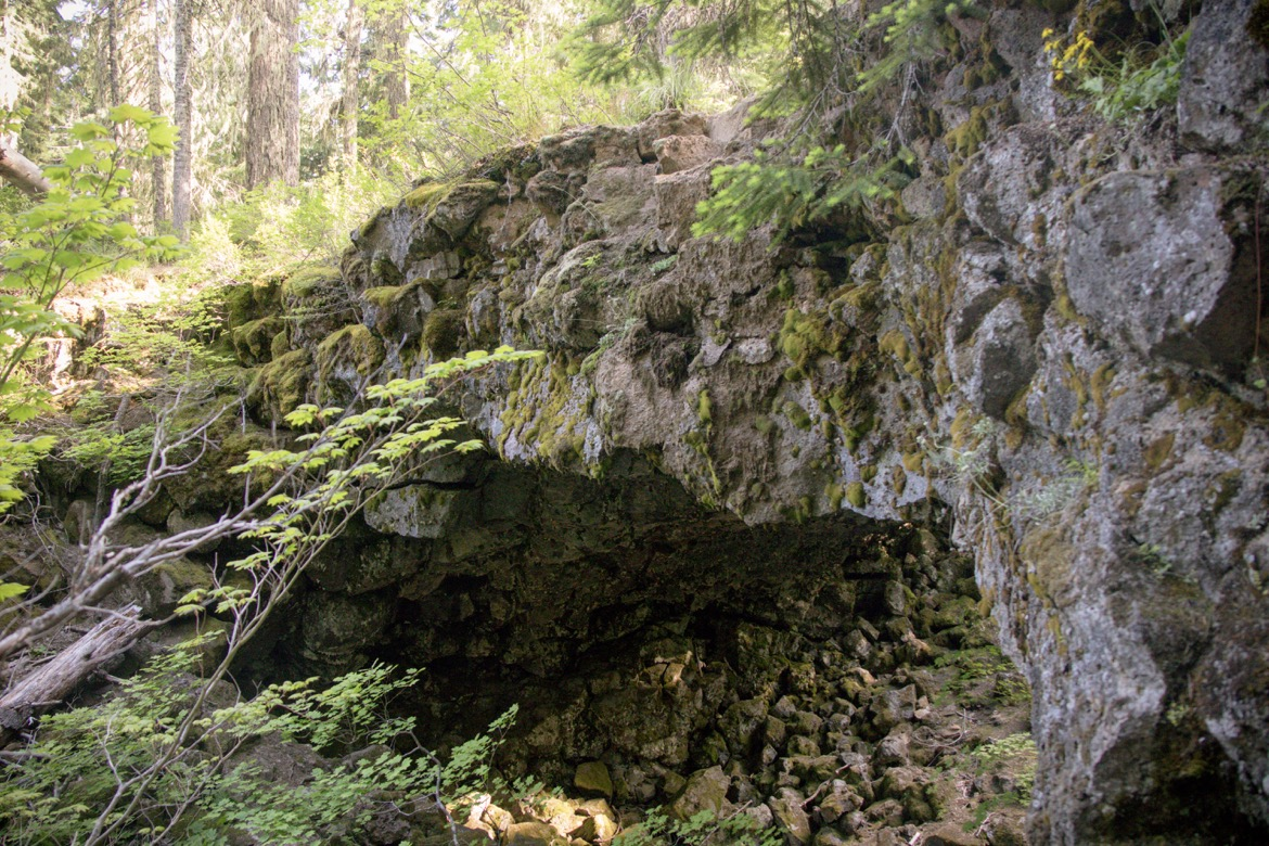 The Natural Bridges in Trout Lake WA