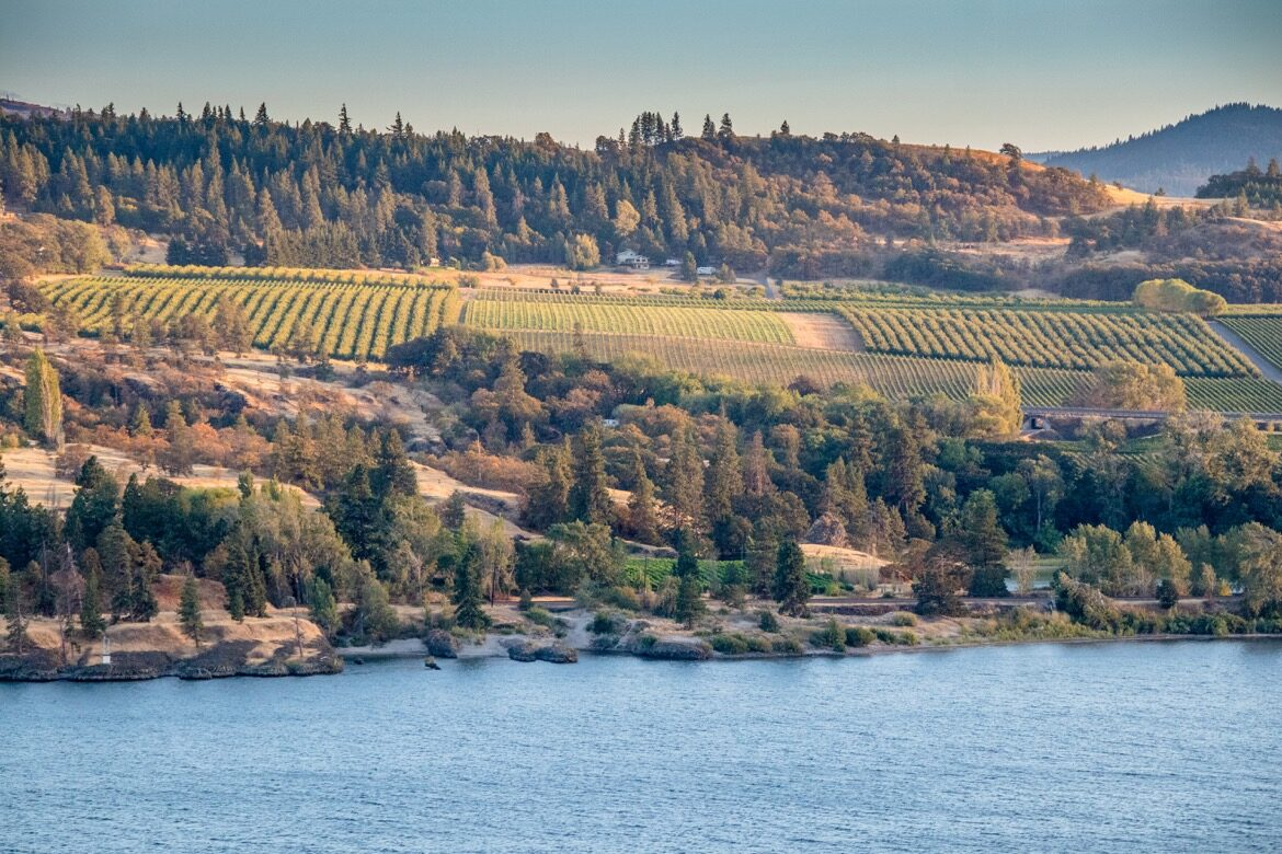 Wineries in Mosier, Oregon